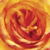 Painterly Flower I