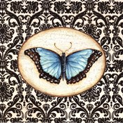 Fanciful Butterfly II