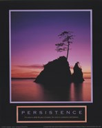 Persistence-Sunset