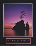 Persistence-Sunset