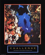 Challenge - Diver