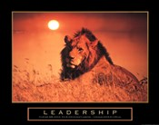 Leadership-Lion