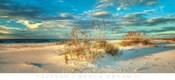 Beach Dream II