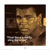 Muhammad Ali- Butterfly