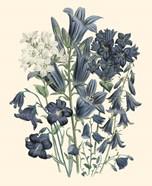Florals III