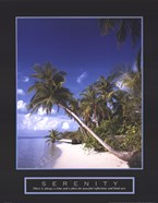 Serenity - Palm Trees