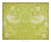 Citrus Chintz II