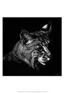 Wildlife Scratchboards IX