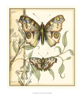 Tandem Butterflies I