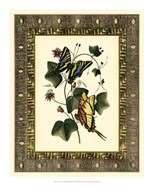 Leather Framed Butterflies II