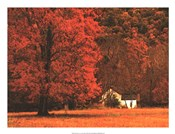 Farm House on a Autumn Morn'
