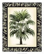 Palm in Zebra Border I