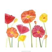 Simply Poppies II