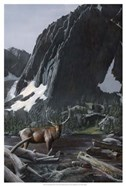 Mountainside Elk I
