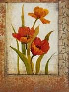 Tulip Inset II