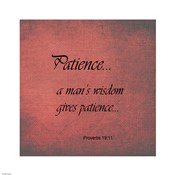 Patience Proverbs 19:11