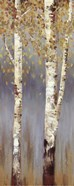 Butterscotch Birch Trees II - MINI
