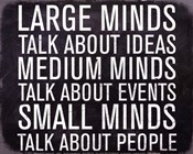 Large Minds - Mini