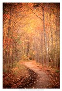 Winding Autumn Path