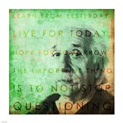 Einstein – Live & Learn Quote