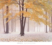 Early Autumn Snow