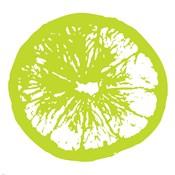 Lime Orange Slice