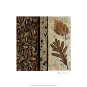 Earthen Textures VI