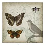 Cartouche & Wings III
