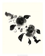 Studies in Ink - Camellia