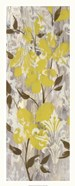 Buttercups on Grey I