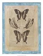Bookplate Butterflies I