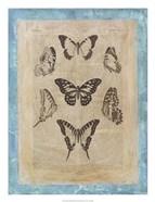 Bookplate Butterflies III