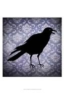 Crow & Damask
