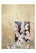 Cherry Blossom Abstract III