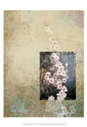 Cherry Blossom Abstract IV