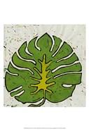 Planta Green IV