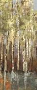 Forest Whisper I