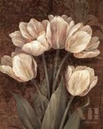 Petit Jardin Tulips