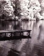 Mint Springs Lake BW V