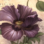 Purple Garden I - mini