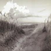 Dunes I Sq. BW