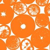 Orange Lemon Slices