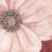 Grandiflora V