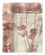 Framed Blossoms I