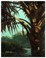 Dark Palm