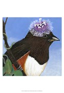 You Silly Bird - Donna