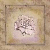 Rose Square I