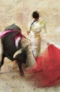 San Miguel, Bullfight #2