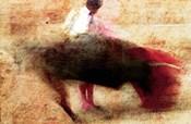 San Miguel, Bullfight #5