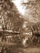Mecan River 3